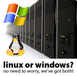 We provide hosting on both Linux and Windows Platforms